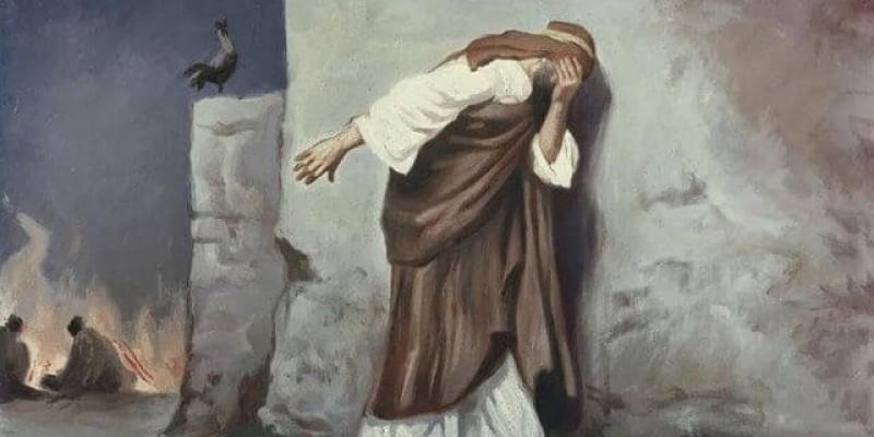 Pedro e Judas, Semelhanças e Diferenças.