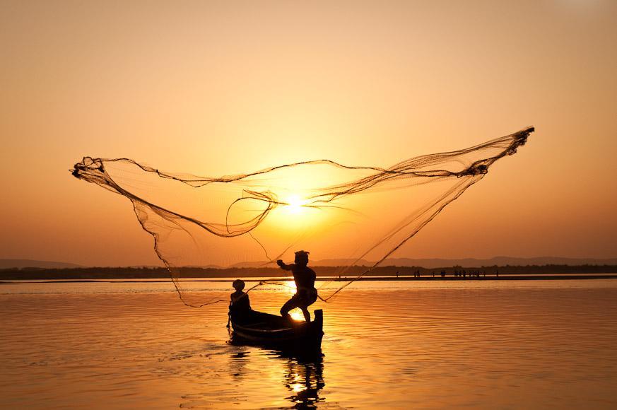 O Mar não está para Peixe